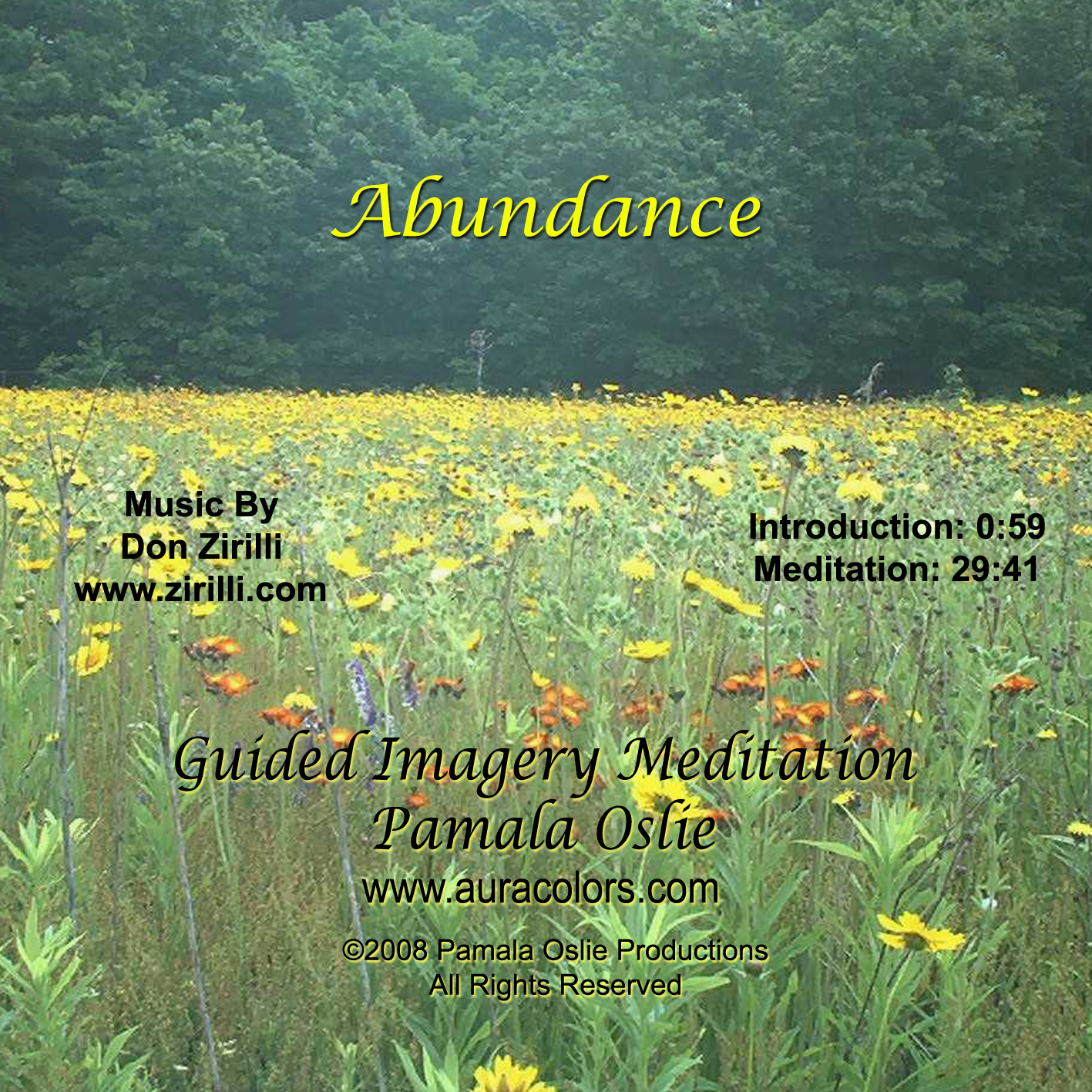Abundance - Guided Imagery Meditation (MP3)