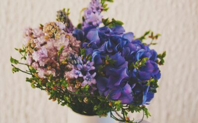 Positive Things You Violet and Blue Aura Colors Bring To Your Gatherings.